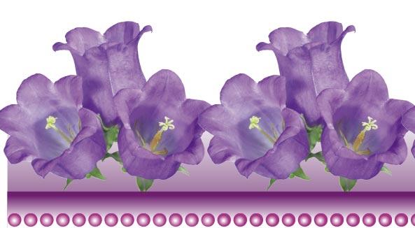 psd-floral-border-frame8.jpg